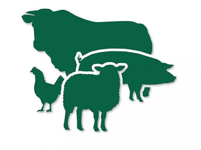 II Всероссийский конкурс зоотехников-селекционеров молочного и мясного скотоводства